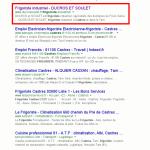 Référencement naturel pour un site web de frigoriste industriel.